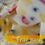 frozen fruit bars